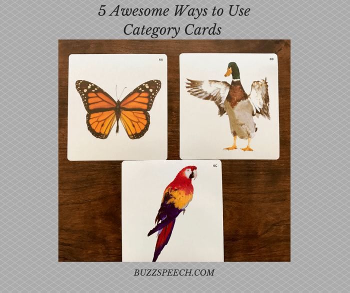 5 Awesome Ways to Use Category Cards