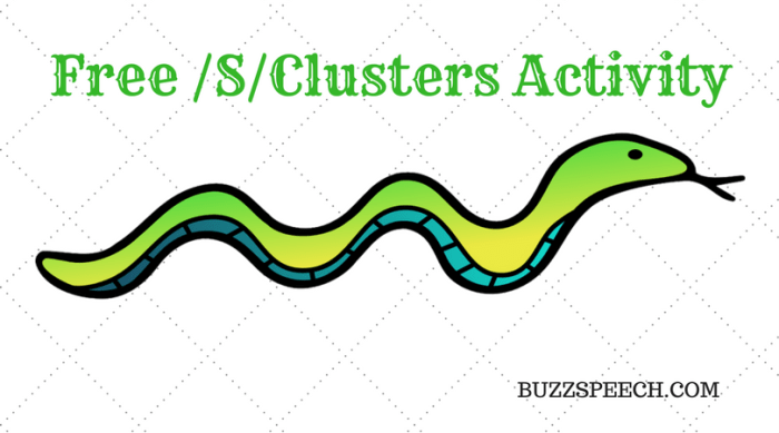 Free /S/Clusters Activity