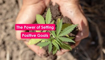 Positive Goals Mental Health Therapy