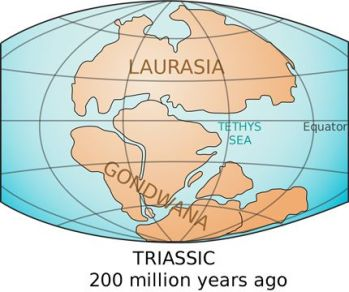 carte du triassic