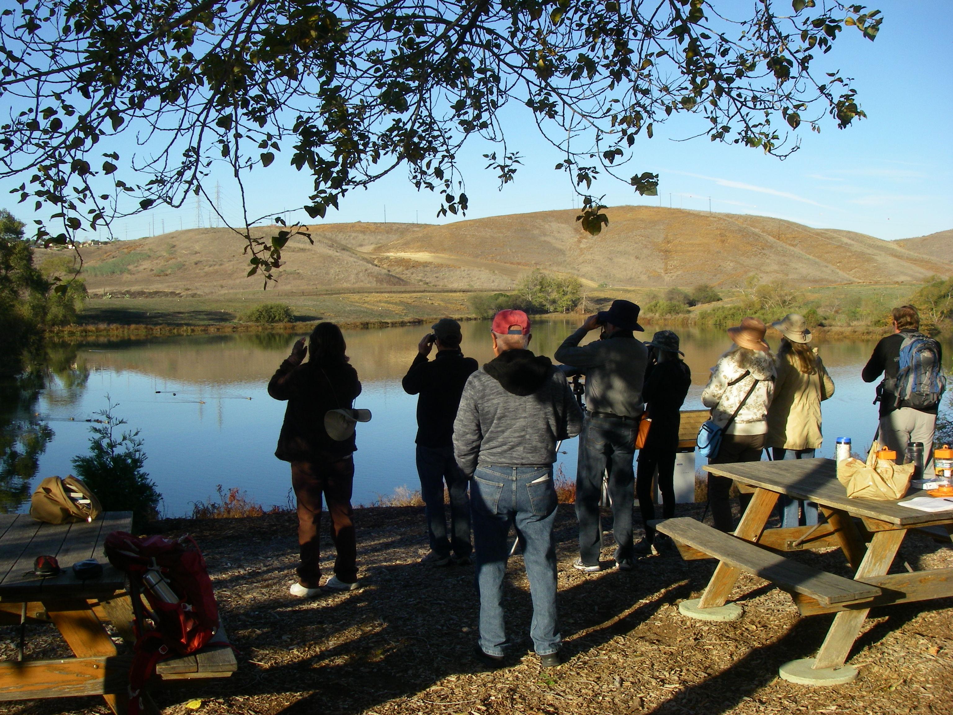 Whelan Lake birding