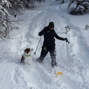 snowshoe sara