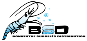 bsd-surgeles-nice