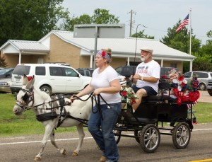 2014 fourth parade