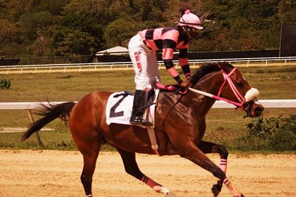 horse-racing-0
