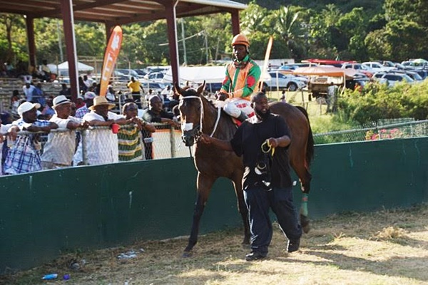horse-racing-v