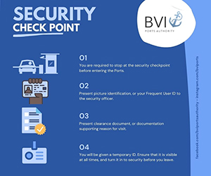BVIPA_security_check_300
