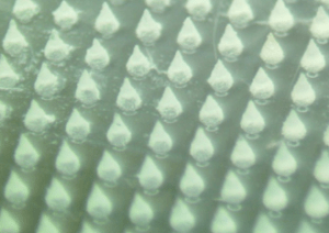 micrograph of our hyaluronic-acid-based microneedles