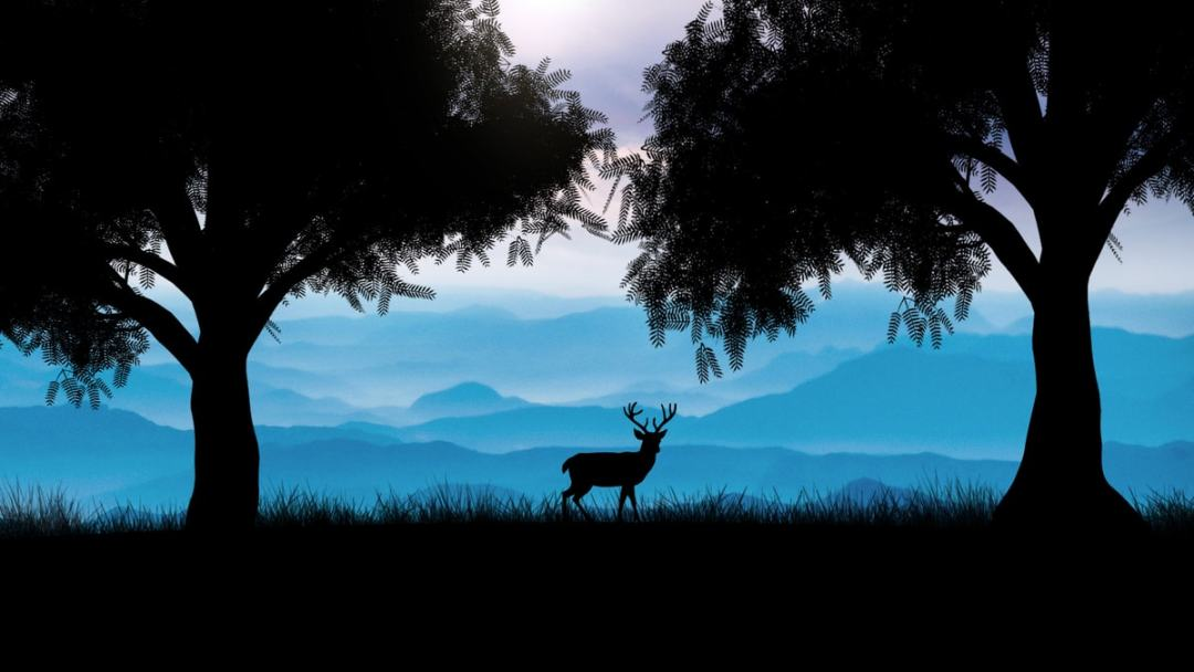 DeerSilhouetteTUTORIALCOMP_EDIT