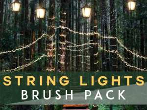string lights brush for photoshop