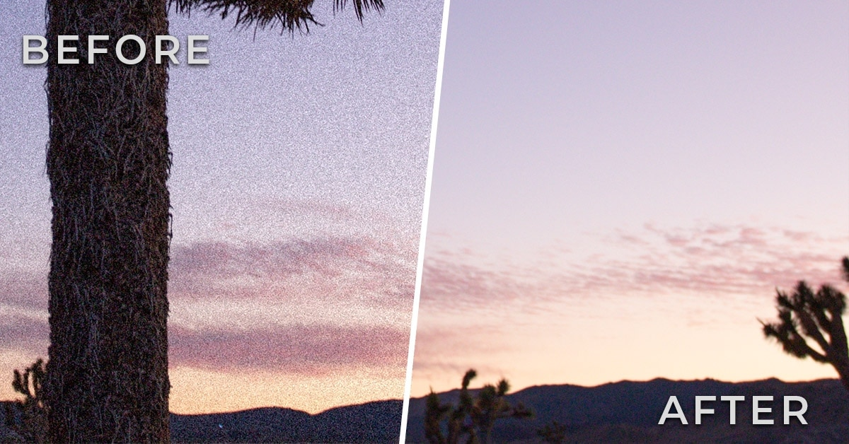 How To Fix Grainy Photos With These 5 Easy Tricks