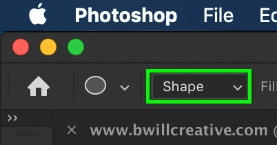 shape-shape-option