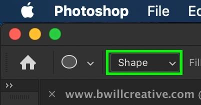 shape-shape-option