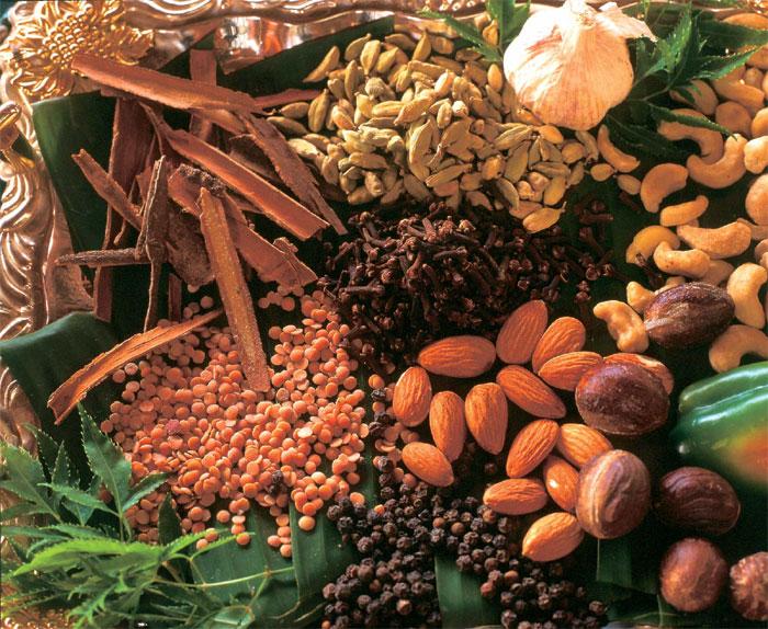 Spice Tour Zanzibar