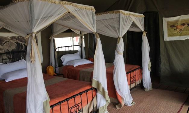 Tanzania Northern Camping Safari, 5 Days