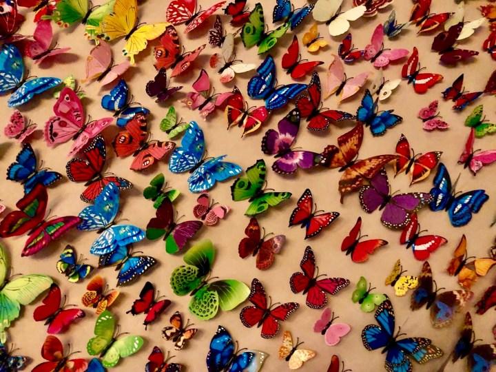 vlinders op een muur
