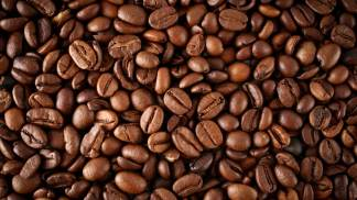 100% Colombian beans