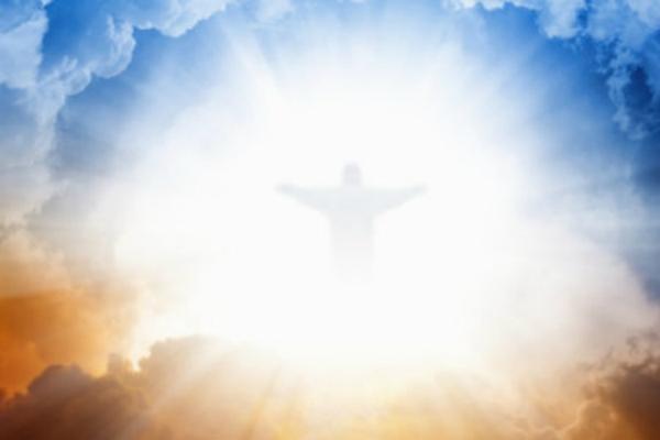 Wie is Jesus virjou?