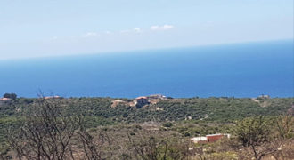 Land for Sale Berbara Jbeil Area 4200Sqm
