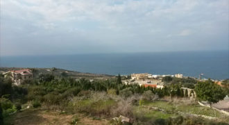 Land for Sale Berbara Jbeil Area 1572Sqm
