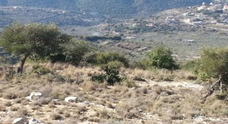 Land for Sale Bejjeh Jbeil Area 6606Sqm