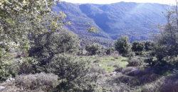 Land for Sale Ehmej ( Aaouayni ) Jbeil Area 1860Sqm
