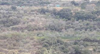 Land for Sale Ain Kfaa Jbeil Area 8000Sqm