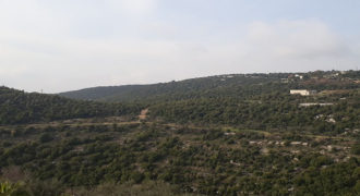 Land for Sale Bejjeh Jbeil Area 3629Sqm