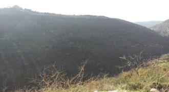 Land for Sale Bejjeh Jbeil Area 7800Sqm