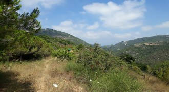 Land for Sale Ain Kfaa Jbeil 5210Sqm