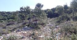 Land for Sale Saqyet El Khayt Area 772Sqm