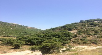 Land for Sale Ain Kfaa Jbeil Area 915Sqm