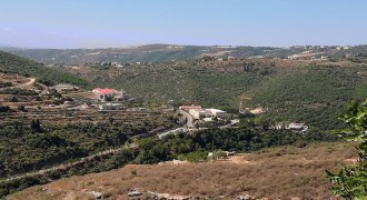 Land for Sale Ain El Delbeh Jbeil Area 29650Sqm