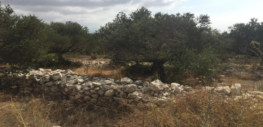 Land for Sale Bekhaaz Jbeil Area 4280Sqm