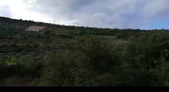 Land for Sale Ghalboun Jbeil Area 3500Sqm