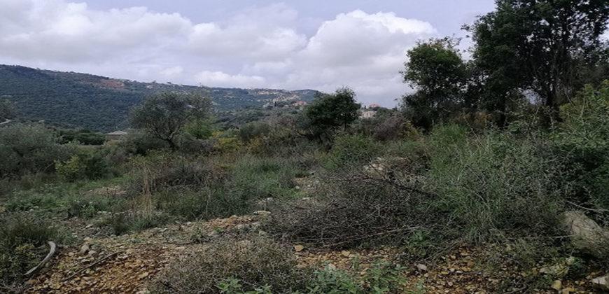 Land for Sale Ain Kfaa Jbeil Area 1070Sqm