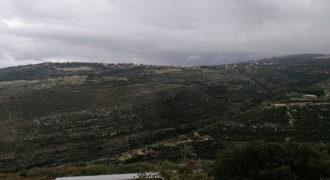 Land for Sale Bejjeh Jbeil Area 5000Sqm