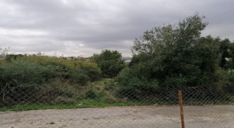 Land for Sale Hbaline Area 2825Sqm