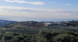 Land for Sale Gharzouz Jbeil Area 1567Sqm