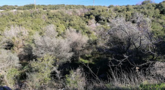 Land for Sale Barij Jbeil Area 960Sqm
