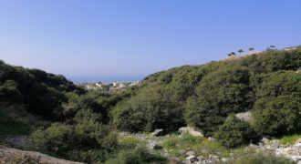 Land for Sale Edde Jbeil Area 1189Sqm