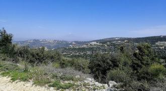 Land for Sale Kharbeh Jbeil area 8057Sqm