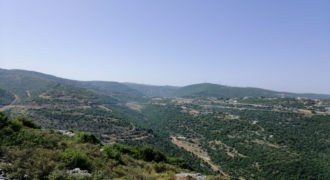 Land for Sale Bejjeh Jbeil Area 35200Sqm