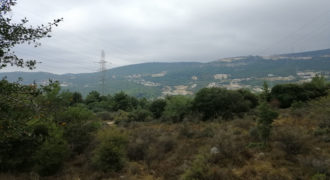 Land for Sale Zebdine Jbeil Area 1100Sqm