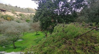 Land for Sale Kfar Mashoun Jbeil Area 4985Sqm