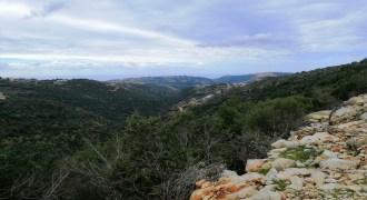 Land for Sale Bejjeh Jbeil Area 8750Sqm