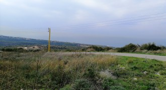 Land for Sale Berbara Jbeil Area 1593Sqm