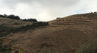 Land for Sale Aaqoura ( Laqlouq ) Jbeil Area 630Sqm