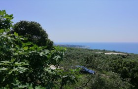 Land for Sale Rayhan Jbeil Area 1900Sqm
