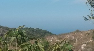Land for Sale Chikhane Jbeil Area 1245Sqm